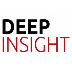 Deep Insight Limited
